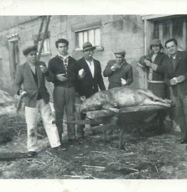 Matanca do Porco